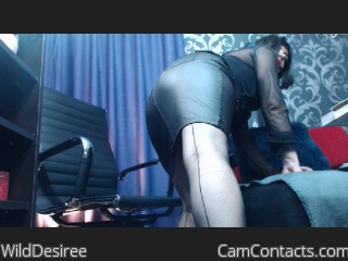 Webcam model WildDesiree from CamContacts