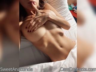 SweetAnaconda profile picture