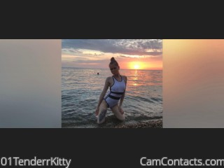 Webcam model 01TenderrKitty from CamContacts