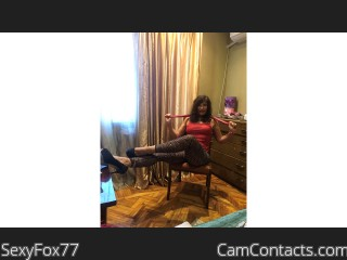 Webcam model SexyFox77 from CamContacts