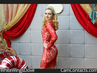 Webcam model WhiteWingsDove from CamContacts