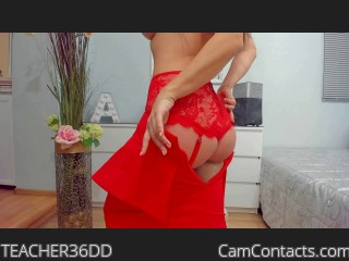 Webcam model TEACHER36DD from CamContacts