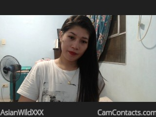 Webcam model AsianWildXXX from CamContacts