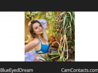 Webcam model BlueEyedDream from CamContacts