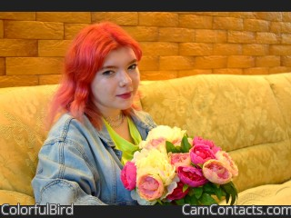 Webcam model ColorfulBird from CamContacts