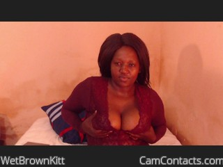 Webcam model WetBrownKitt from CamContacts
