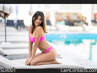 Webcam model SLR001 from CamContacts