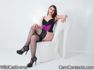 Webcam model WildCatEmma from CamContacts