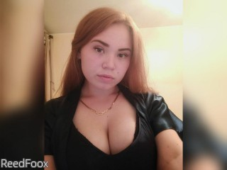 LIVE SEXCAM VIDEO CHAT mit ReedFoox